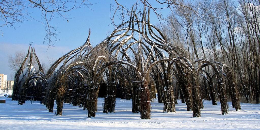Weidendom im Winter